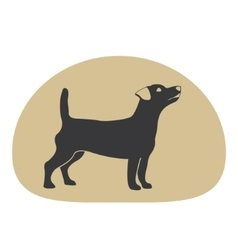 Dog logo design element vector image