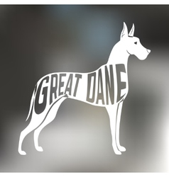 Creative design of grat dane breed inside dog vector