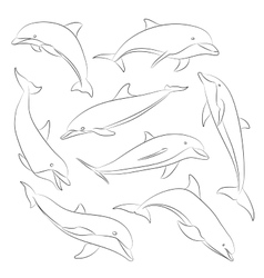 Hand drawn set of dolphins vector