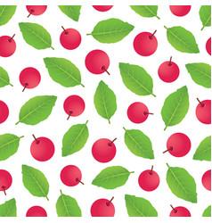 berrypattern-02 vector image vector image