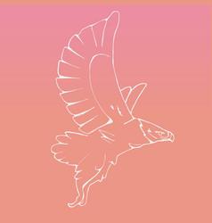 hand-drawn graphics bird predator bird of prey vector image vector image