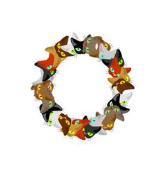 letter o cat font pet alphabet symbol home animal vector image vector image