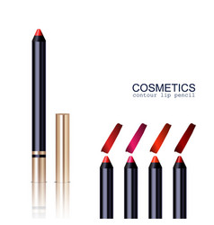 lip pencil set vector image