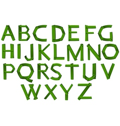 Green colored letters of the alphabet vector image
