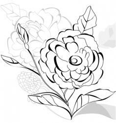 monochrome decorative card vector image