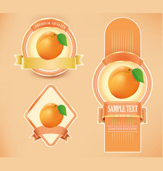 package labels with apricot vector image vector image