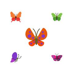 Flat monarch set of milkweed moth summer insect vector