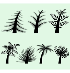 Collection of tree silhouettes vector image