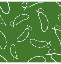 Pattern circuit cucumber vector