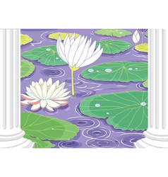 Pond with white lotus flowers vector