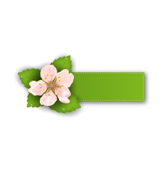Special Offer Sticker with Flower Isolated on vector image