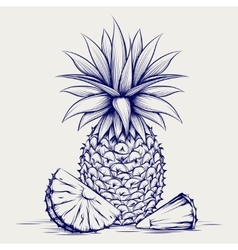 Ball pen sketch pineapple vector