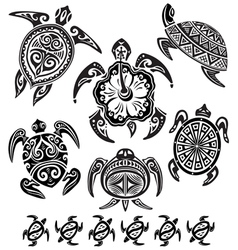 decorative turtles vector image vector image