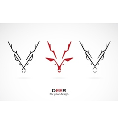 image of an deer design vector image