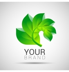 Environmental leaves branch logo eco vector