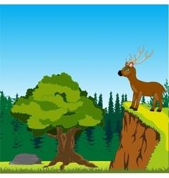 Deer on in wood vector