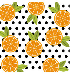 fruit citrus orange food polka dots seamless vector image