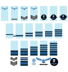 Indian Air Force insignia vector image