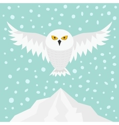 Snowy white owl flying bird with big wings vector