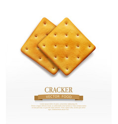 Two cracker isolated on white background vector