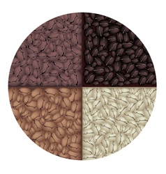 Roasted coffee circle background vector