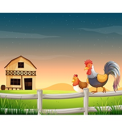 A rooster and a chicken near the barnhouse vector image vector image