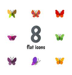 Flat moth set of archippus violet wing summer vector