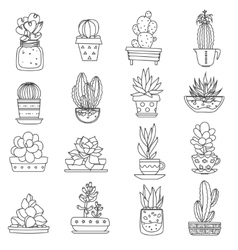 Cactus line icons set vector