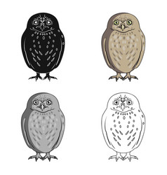 owlanimals single icon in cartoon style vector image vector image