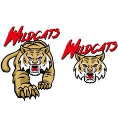 Wildcats mascot vector