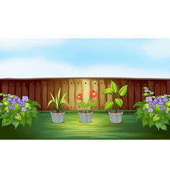 Different types of plant inside the wooden fence vector