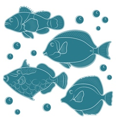 Collection of tropical reef fish vector