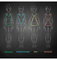 Chalked female body types vector