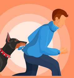 Angry doberman holds man in teeth by sweater vector
