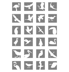 Birds icon vector
