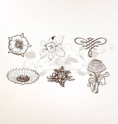set of vintage floral elements vector image