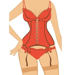 Beautiful woman figure in a red corset vector image