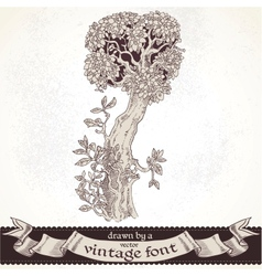 Fable forest hand drawn by a vintage font - i vector