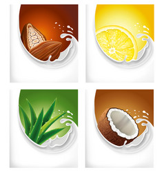 milk splash with lemon cacao aloe vera coconut vector image vector image