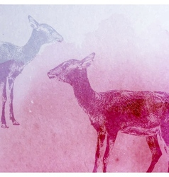 vintage of a watercolor goat or antelope on vector image