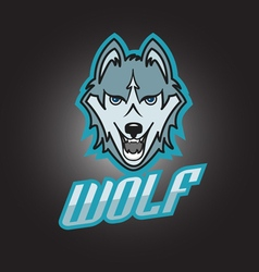 Modern professional wolf logo for a club or sport vector
