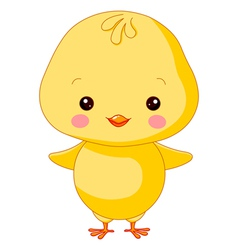 Farm animals chick vector