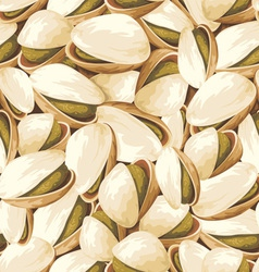 Pistachios background vector