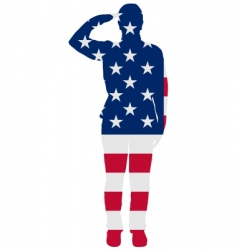 American salute vector image