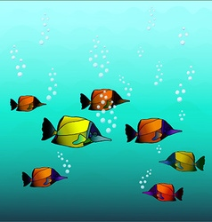 Orange fishes vector