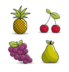 Pineapple cherry grapes and pear icon vector