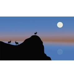 Silhouette of antelope in cliff vector