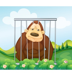 A gorilla in a cage vector
