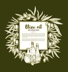 Olive oil and fruit sketch poster with copy space vector