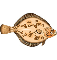 Flounder cartoon vector
